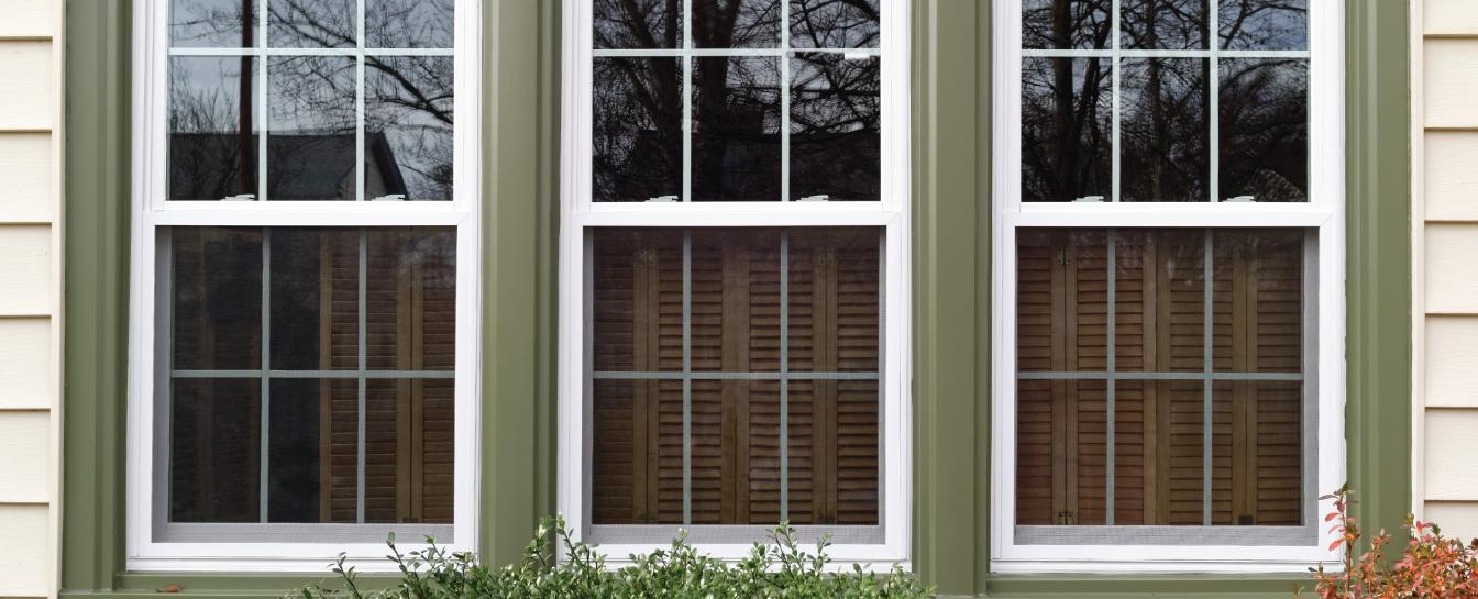 Door and Window tint