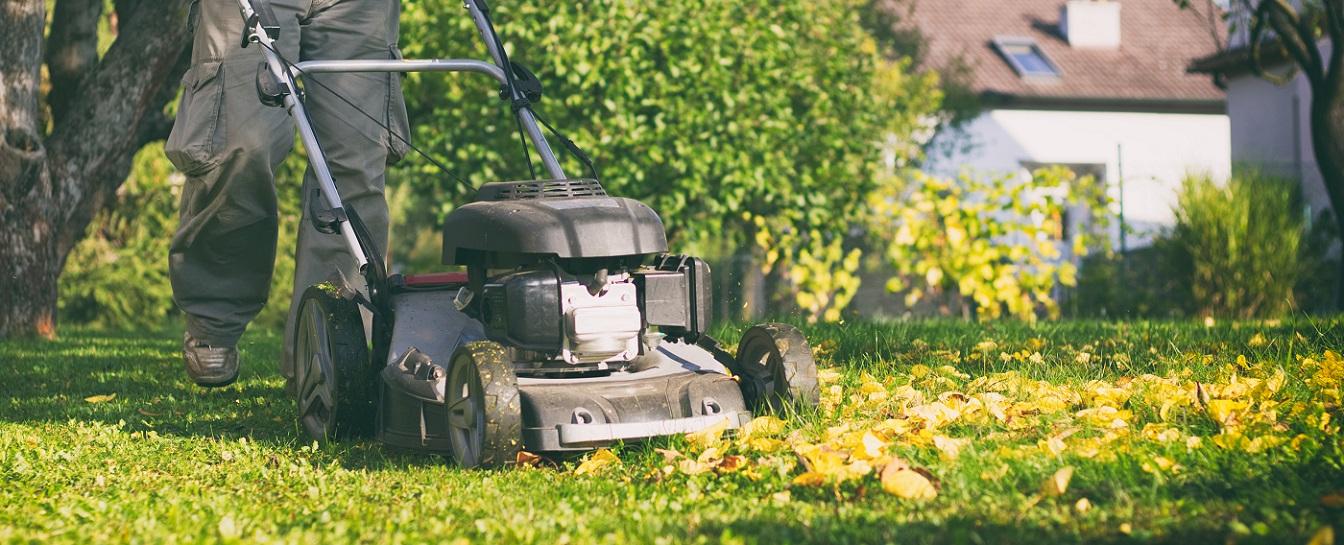 Other custom job - general garden maintenance, etc.
