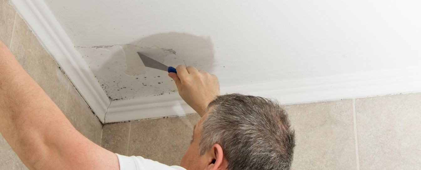 Water leakage and mold removal